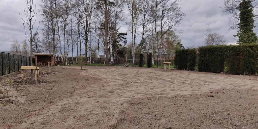 Particuliere tuin - Diepenbeek 01 1000x500